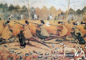 Alexander-Charles-Jones-COCKS-ONLY-Gun-Dogs-Shooting-Pheasant-Game-Bird-Humour
