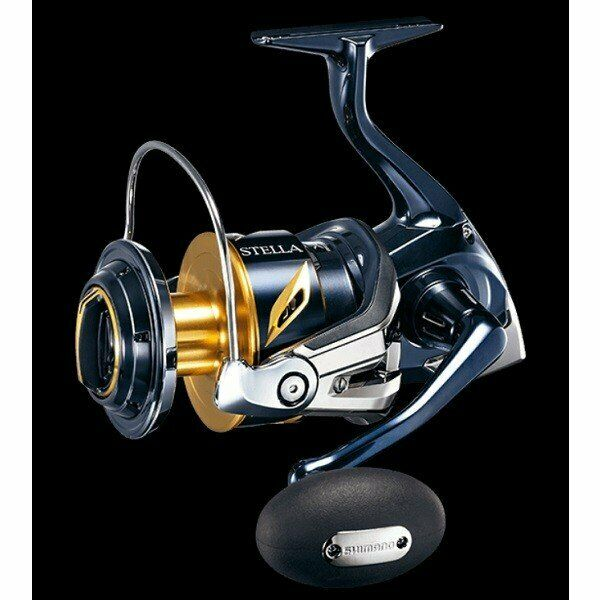 Shimano 19 Stella SW 10000 PG From Japan