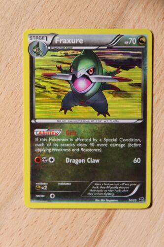 B /& W Dragon Vault Promo Holo /& Non-Holo Rare Pokemon Cards