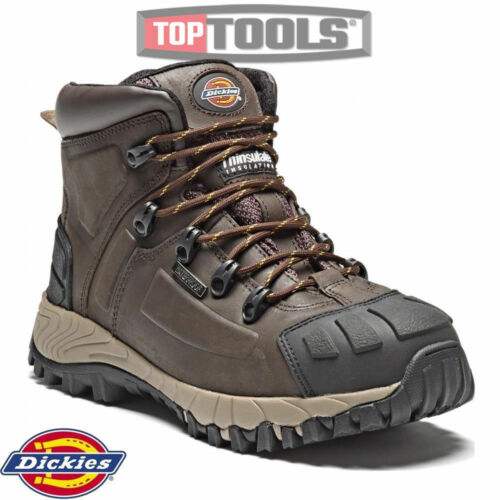 acciaio in pelle in Dickies Thinsulate antinfortunistici Stivali Fd23310 Medway WXqP08