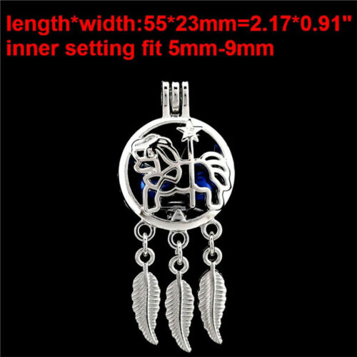 Sliver Alloy Dream Catcher Beads Charms Pearl Cage Locket Aroma Diffuser Pendant