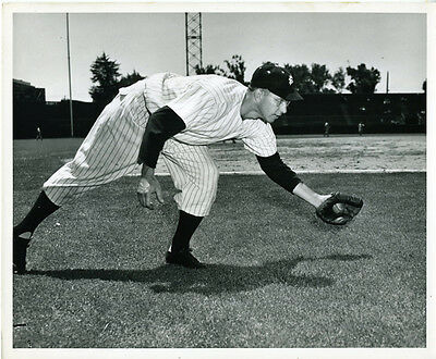Large Original 1940s Photo of San Francisco Seals PCL Baseball Player (23)