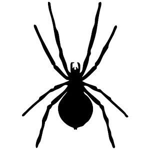 27-SPIDER-stickers-halloween-wall-art-party-decorations-car-sticker