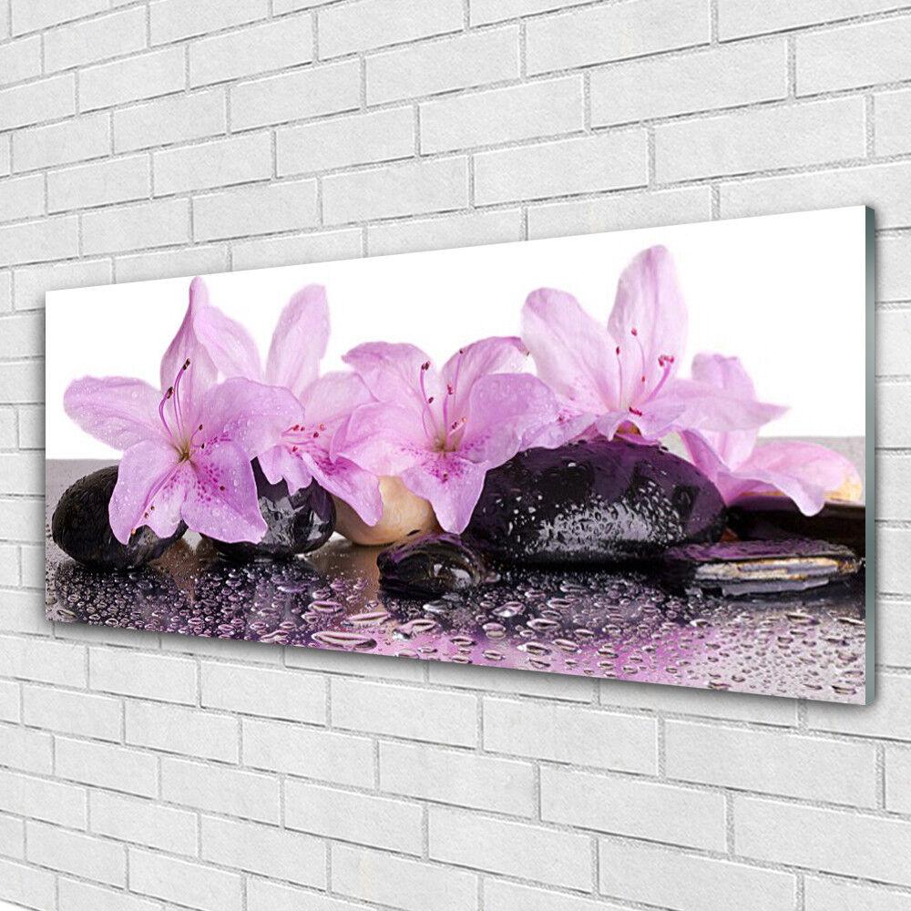 Murales cuadros de presión cristal presión de sobre vidrio 125x50 flores plantas piedras 343127