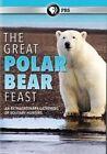 Great Polar Bear Feast - DVD Region 1
