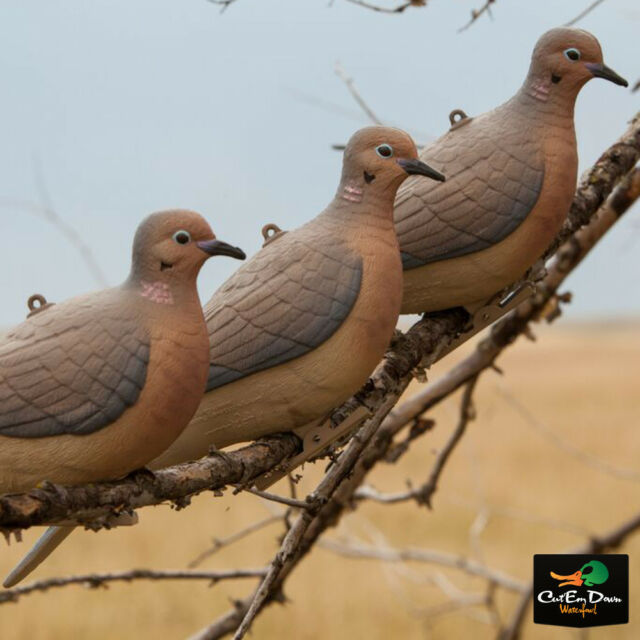 Doves For Sale >> 2 Flambeau Gear Clip On Dove Decoys Mourning Doves For Sale Online
