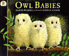 Owl Babies by Martin Waddell (Paperback, 1998)