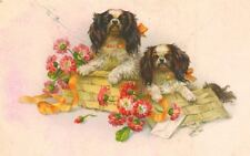 RARE Old Cavalier King Charles Spaniel Dog Postcard Paris France c1910