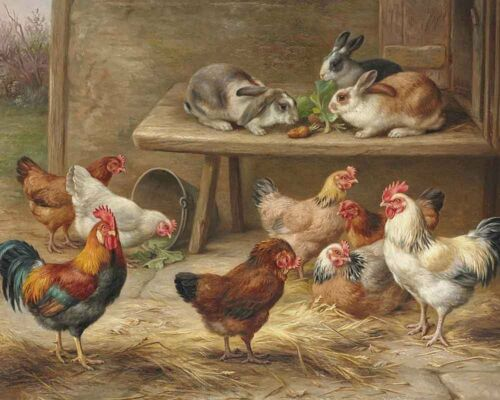 Home Wall Art Decor chickens and rabbits Oil Painting Printed On Canvas III