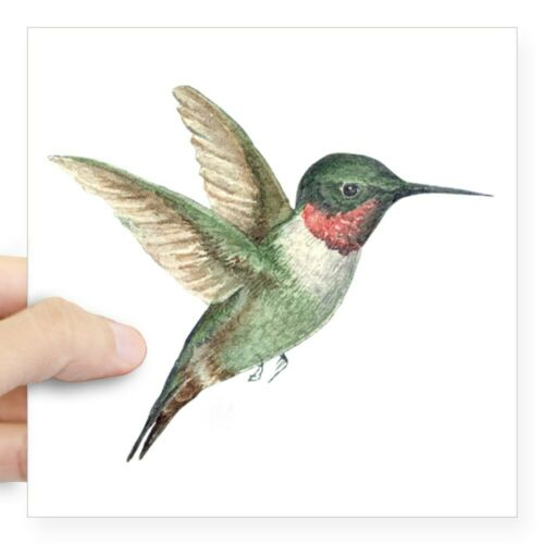 CafePress Hummingbird Square Sticker 3 X 3 Square Sticker 664965341