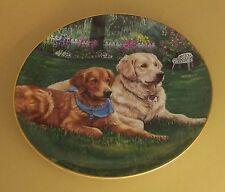 Golden Retrievers GARDEN VISITOR Plate Dog Patricia Bourque Danbury Mint Daisies