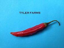 25+ Piri Piri Pepper Seeds (chili, chile) Hot Organic (Bird's Eye Thai)