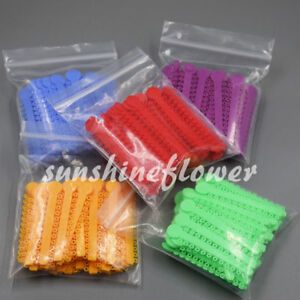 1-Pack-Ligature-Tie-12-Colors-5-Pcs-Dental-Orthodontics-Elastic-Latex-Bands