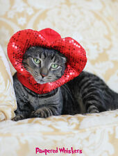 """Valentines Day costume/ hat for cats and dogs 8-11"""" collar size"""