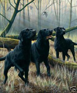Nigel Hemming TREE FELLAS Black Labradors Labs Gun Dogs, Shooting Woodland Art