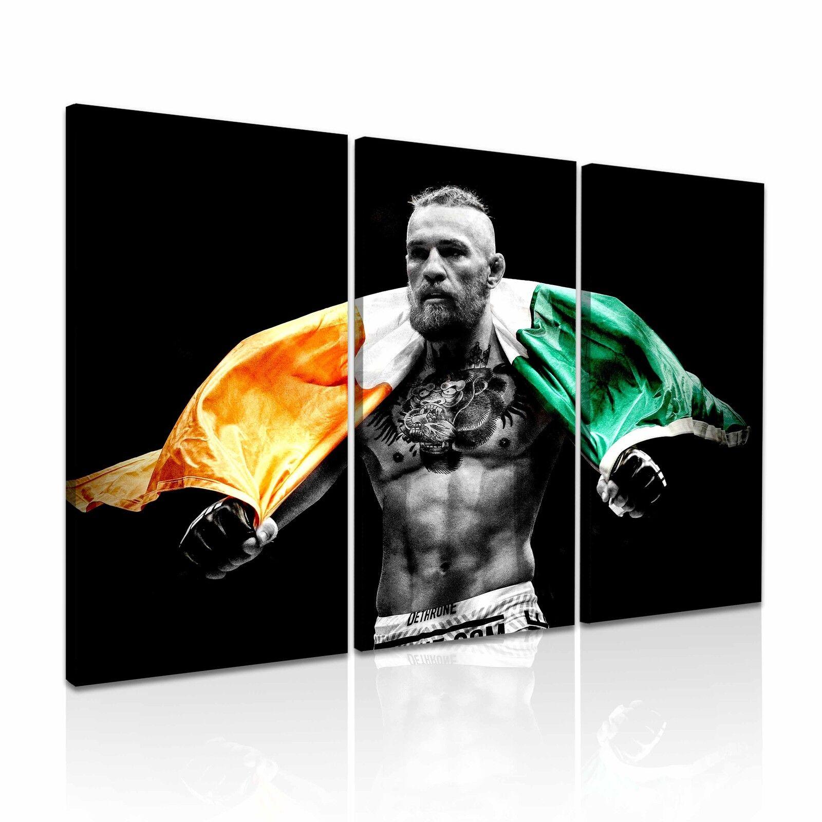 Conor McGregor UFC Canvas Wall Art Picture Print 3 Panels