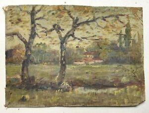 Petit tableau ancien, Huile sur toile, Livrac, Gironde, Daté 1916, Début XXe