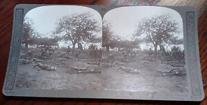 WORLD-WAR-1-STEREOVIEW-They-never-faltered-German-trenches-Realistic-Travels
