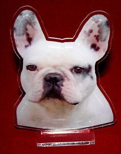 statuette-photosculptee-10x15-cm-chien-bouledogue-francais-2-dog-hund-perro-cane