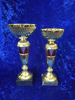 Gold Red Cup Style Trophy Equestrian Sport Football Dance FREE Engraving
