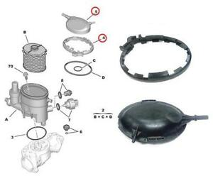fuel filter housing clamp lid citroen xsara berlingo peugeot 206 306 1 9d dw8. Black Bedroom Furniture Sets. Home Design Ideas