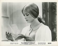 CATHERINE DENEUVE LES PARAPLUIES DE CHERBOURG 1964 VINTAGE PHOTO ORIGINAL #2
