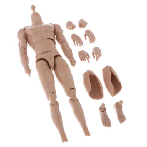 1//6 männliche Figur Körperfiguren Gliederpuppe Zeichenpuppe Schmale Schulter