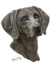 Weimaraner Dog Robert May Art Greeting Card Set of 6