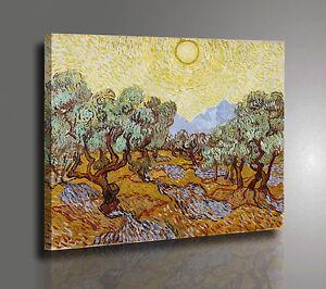 Vincent Van Gogh Campo Verde Stampa su Tela Vernice Pennellate Poster su Tavola