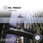 Agile Project and Service Management: Delivering IT Services Using ITIL, PRINCE2 and DSDM Atern by Stationery Office, Office of Government Commerce, Dorothy J. Tudor (Paperback, 2008)