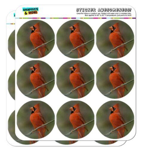 Red Cardinal Bird On Branch Planner Calendar Scrapbooking Crafting Stickers