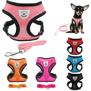 Adjustable-Breathable-Mesh-Small-Dog-Cat-Pet-Harness-Leash-Collars-Puppy-Vest