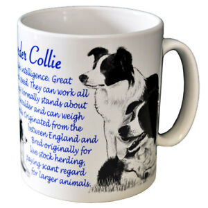 Border-Collie-Ceramic-Coffee-Mug-Dog-Origins-Breed