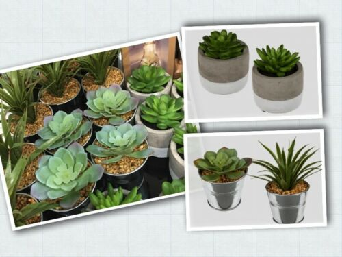 Details about  /Artificial Potted Plants Succulents in Metal or White//Grey Ceramic Pots