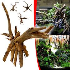 Zilla Reptile Dcor Malaysian Driftwood