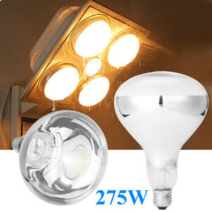 Image Is Loading E27 275w Infrared Heat Lamp Light Bulb For