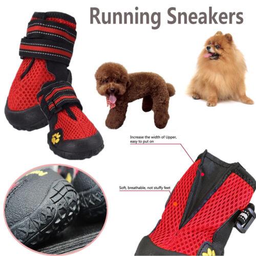 sport baskets 1 air de en compagnie chaussures de course chiot chien de animaux bottes lot filet plein SYnqzW6YTx
