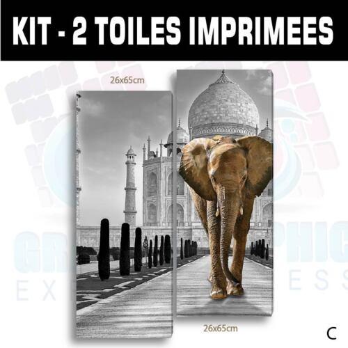 TABLEAU ELEPHANT TAJ MAHAL FELIN IMPRESSION IMAGE 58 MODELES IMPRIMEE