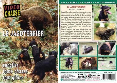 Le jagdterrier : Sanglier toute chasse tout gibier  - Chiens de chasse - Vidé...