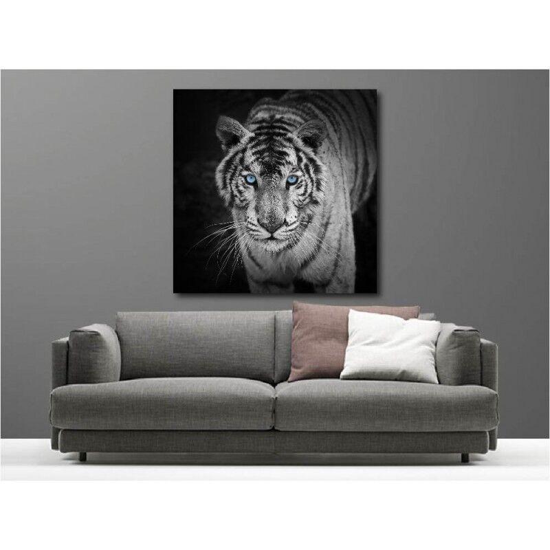 Gemälde Stoff Deko Quadratisch Tiger Weiß 109350038