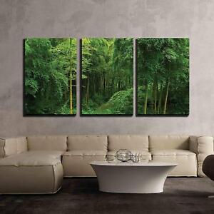 wall26 hidden path in a bamboo forest cvs 16 x24 x3 panels ebay
