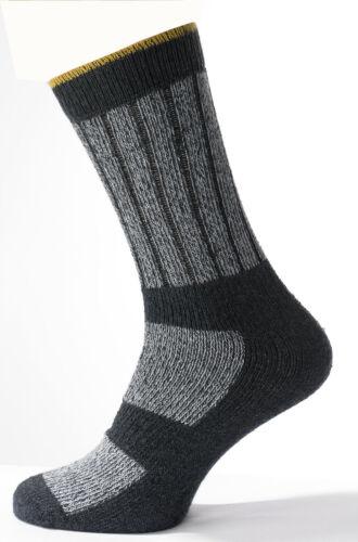 6 Paires Homme travail chaussettes Boot Résistante Chaud Rembourré Soutien