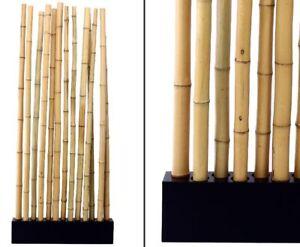 Bambus Raumteiler Paris4 Mit Ca 90x12x205cm Sockel Und 13 Rohre