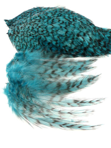 """TURQUOISE GRIZZLY ROOSTER CAPE VARIANT HAIR CRAFT FEATHER 4/""""L-6/""""L 25"""