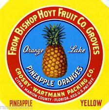 Citra Marion County Florida Pineapple Yellow Orange Fruit Crate Label Art Print
