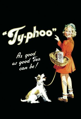Vintage Typhoo Drinks Advertisment Poster Nostalgic Retro re-print