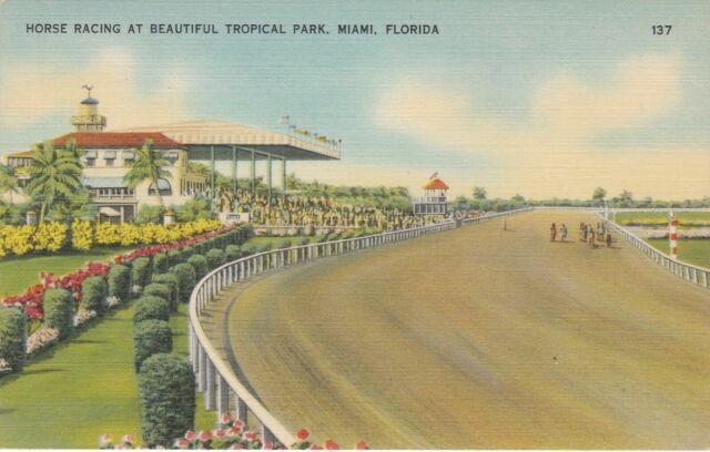 Miami Horse Racing Tracks