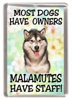 "Alaskan Malamute Dog Fridge Magnet ""Most Dogs Have Owners Malamutes Have Staff"""