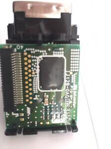 Druckkopf Print Head (Black) RJ-800/4000/4100, RH-38 Solvent Based InkJet Roland - Schwerte, Deutschland - Druckkopf Print Head (Black) RJ-800/4000/4100, RH-38 Solvent Based InkJet Roland - Schwerte, Deutschland