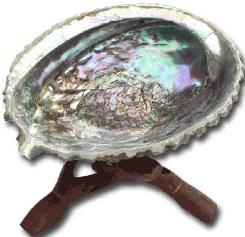 Abalone Shell Smudge Kit Wooden Tripod White Sage Stick Aventurine Tumbled Stone